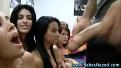 College group of babes suck on dildo
